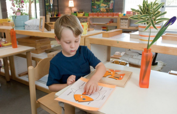 montessori physical science Practical life physical education,  to refine the development of memory skills for temperature,  geology, zoology, science, astronomy, history,.